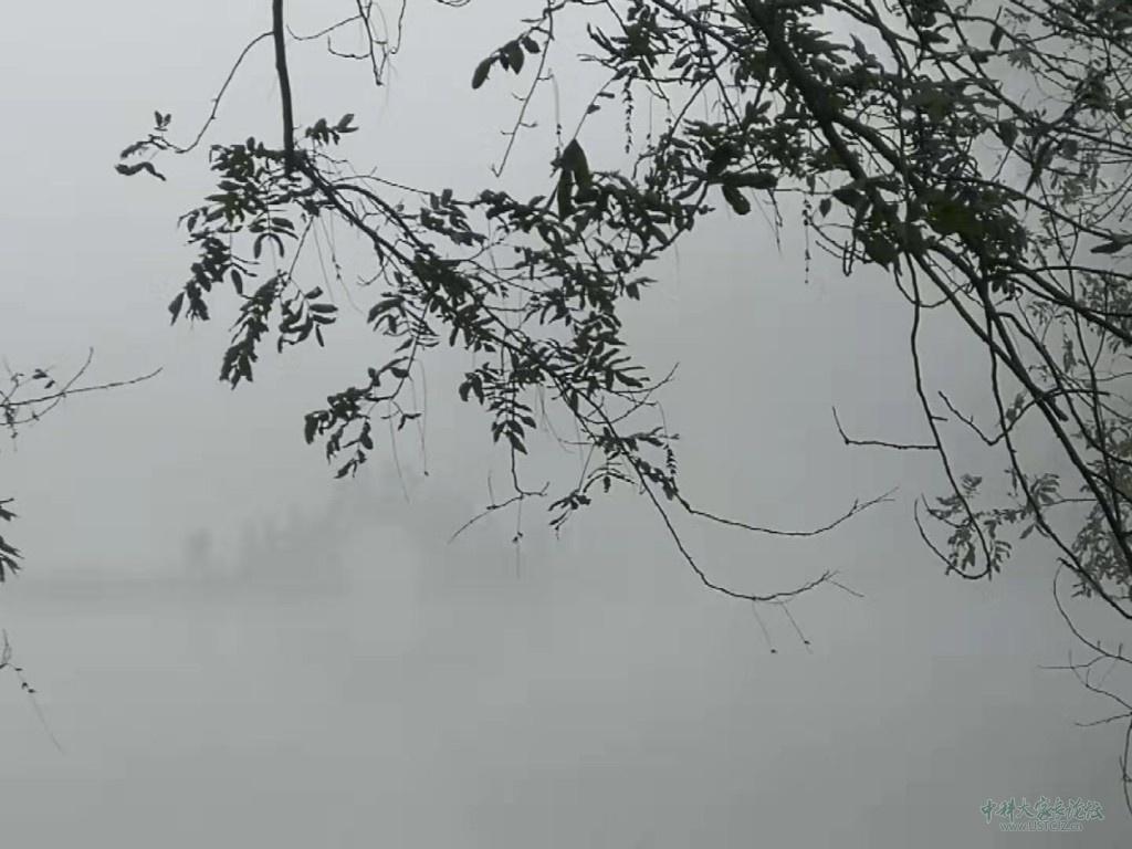 雾里画乡.jpg