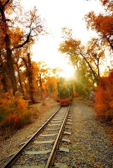 小火车2.jpg