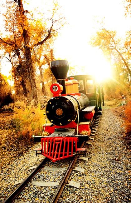 小火车3.jpg